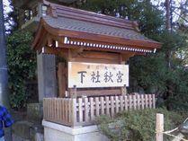 Shimosya