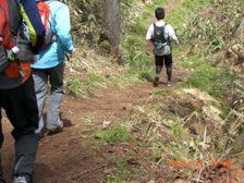 59_trail