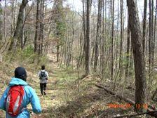 71_trail