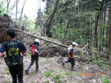 09_trail