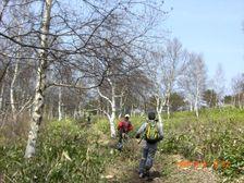 50_trail