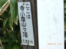 25_teratop
