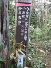 28_kanayama