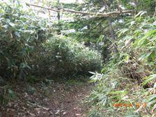 30_trail