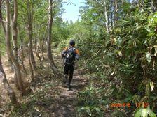 121_trail