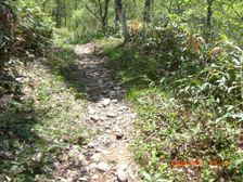126_trail