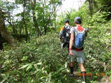 137_trail