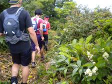 08_trail