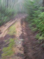 23_trail