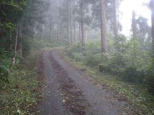 27_road