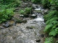 18_river